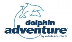 2. Logo Dolphin
