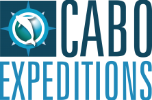miembros-1. VersionesLogo Cabo Expeditions-1